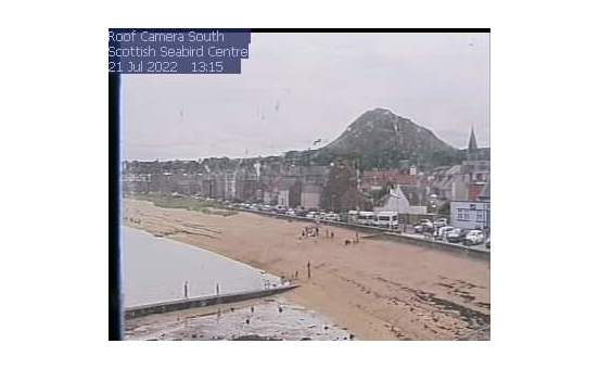 North Berwick Webcam